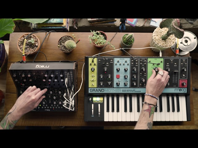 Moog Semi-Modular Synthesizers | Interconnectivity