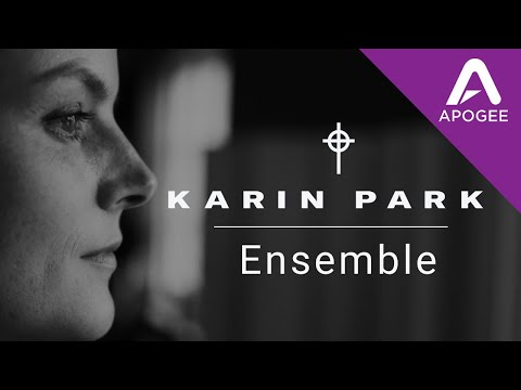 Karin Park On Apogee Ensemble
