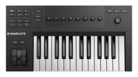 Native Instruments KOMPLETE KONTROL A25 по цене 14 520 руб.