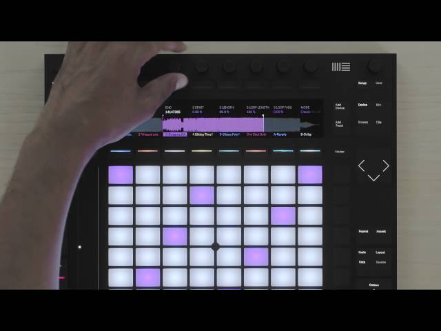 Ableton Push 2 Tutorial – Warping Features and Functions