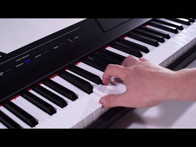 Alesis Recital Overview