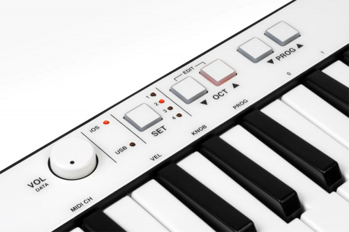 IK Multimedia iRig Keys по цене 15 500 ₽
